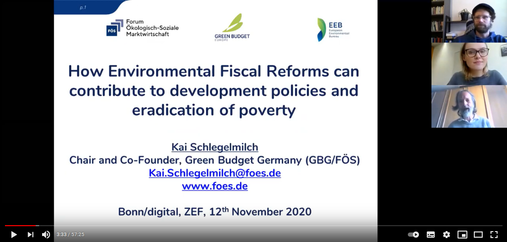 How environmental fiscal reforms can contribute to development policies and eradication of poverty
