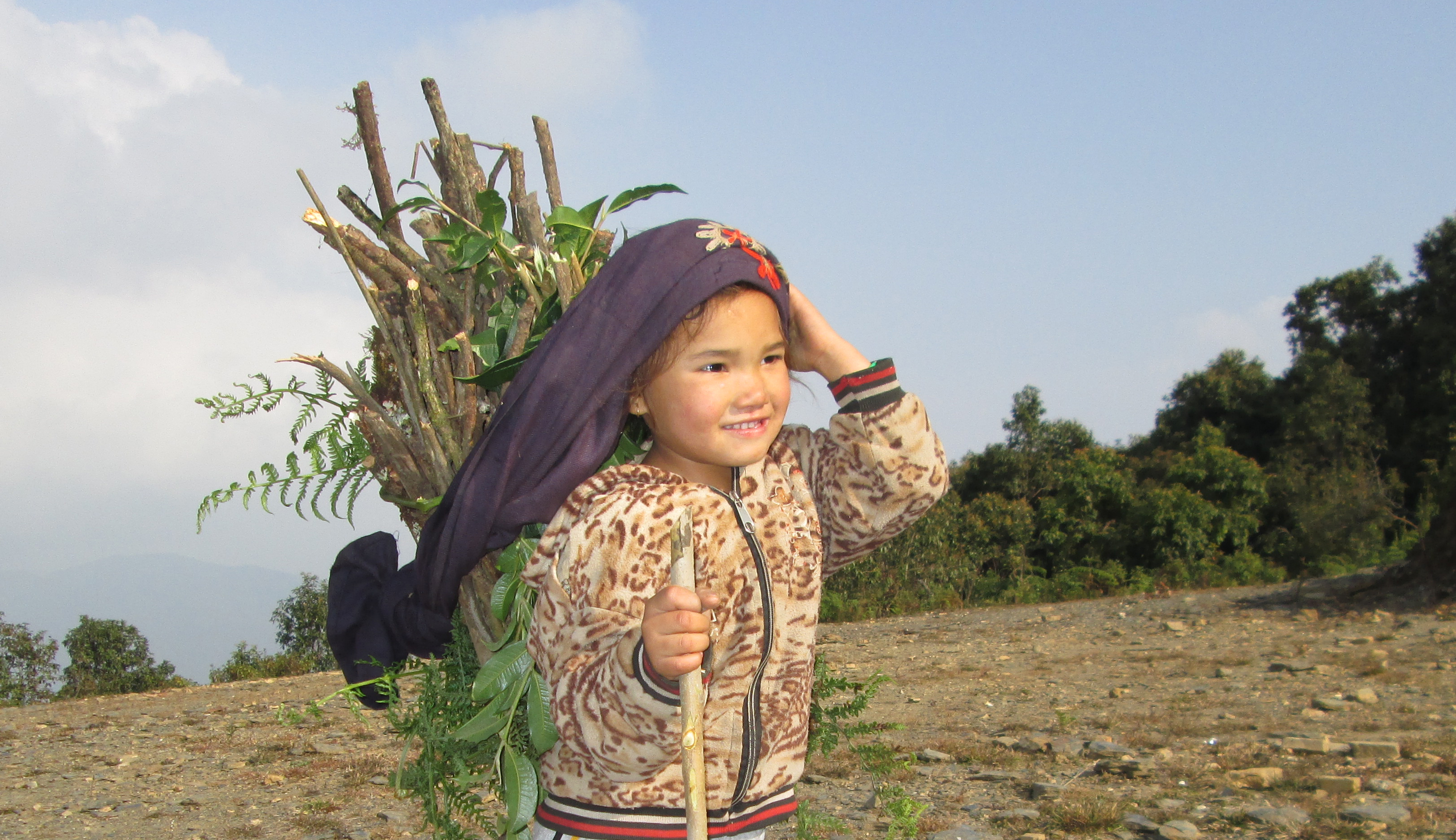 Girl in Nepal carrying fuelwood.